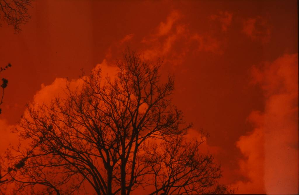 Intense the Redscale XR