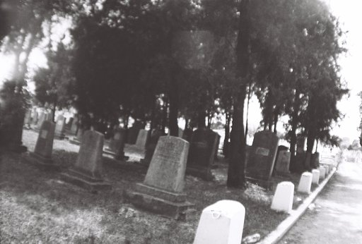Urban Adventures: The Central Cemetery