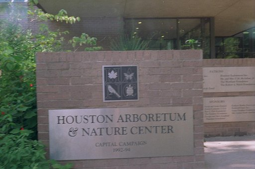 An Escape From the City, the Houston Arboretum and Nature Center