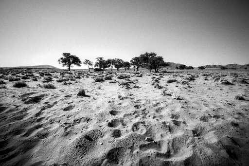 Around the World in Analogue : Parc national de Namib-Naukluft, Namibie