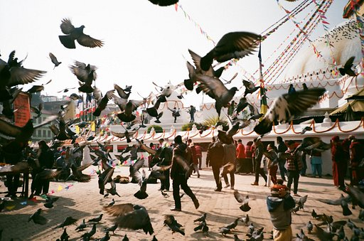 How Wangyunhan Uses Her Lomographic Arsenal in Documentary Photography