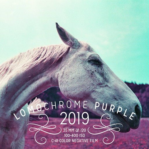 Pre-order The New 2019 LomoChrome Purple and Save a Whopping 30% !
