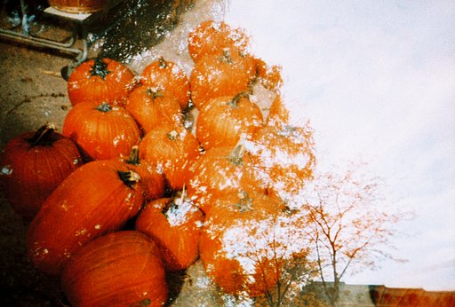 November Workshops and Events for Lomography Chicago
