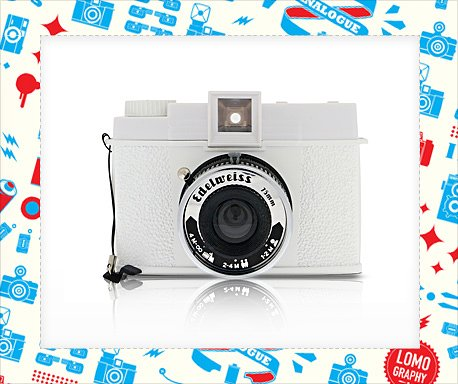 December 21st Only - Save 10% on the Diana F+ Edelweiss