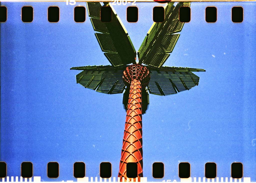 See Your Summer In Sprocketed Lomographs