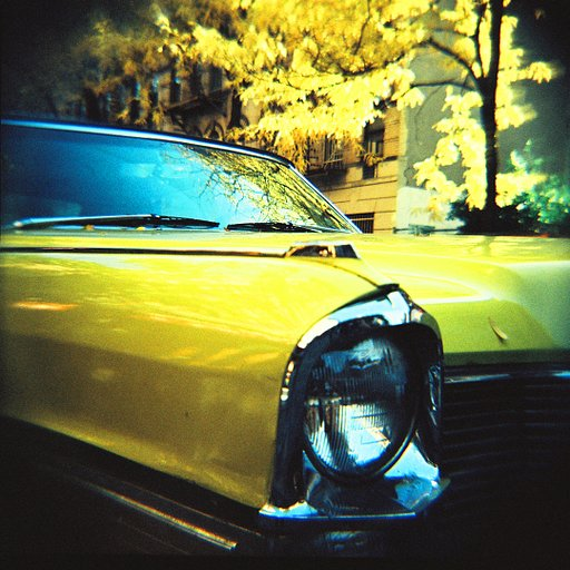 LomoAmigo Brian Boulos Shoots with the Diana F+