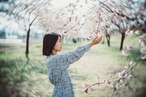 It's All in the Lens — Refining the Art of Bokeh with the new Petzval 55 mm f/1.7 MKII
