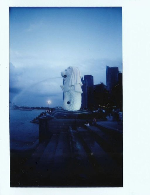 Damian Wong and Sandra Ong: Commemorating Singapore with the Lomo'Instant Wide