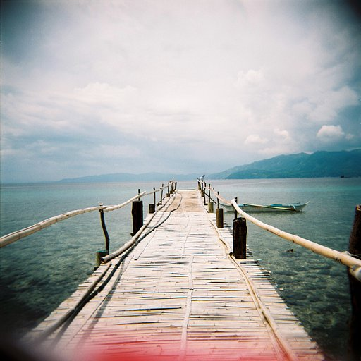 A Perfect Day for Lomography--and my first best photo!