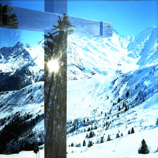 Awesome Photographs of Winter Scenery Taken with the Diana F+