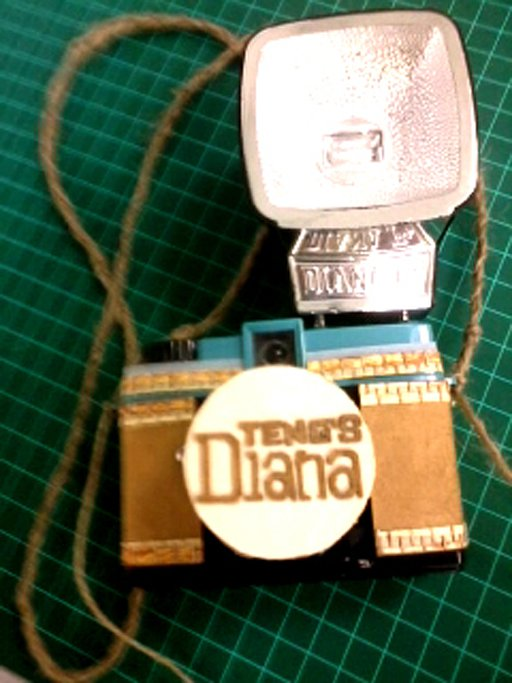 A New and Recycled Look for My Diana Mini