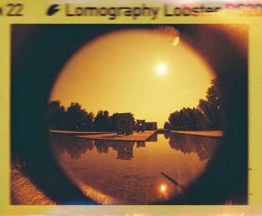 Fiery Images Courtesy of Lomography Lobster Redscale Rumble Winners