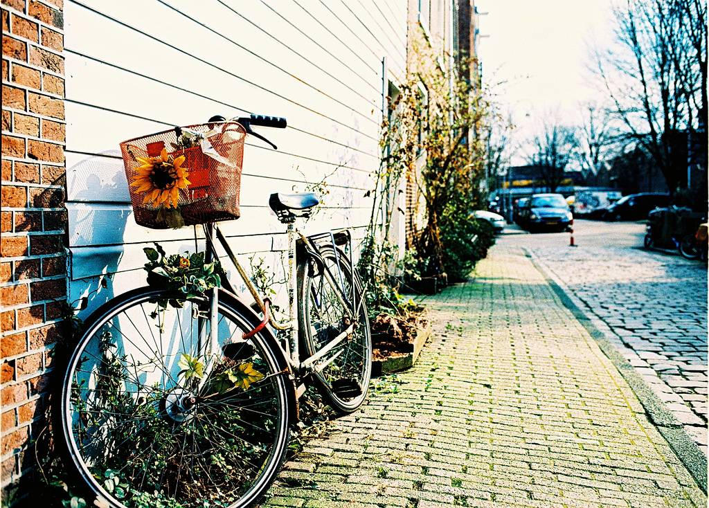Your Amsterdam LomoWall Competition