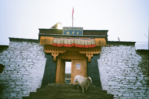 Around the World in Analogue: Tibet, China