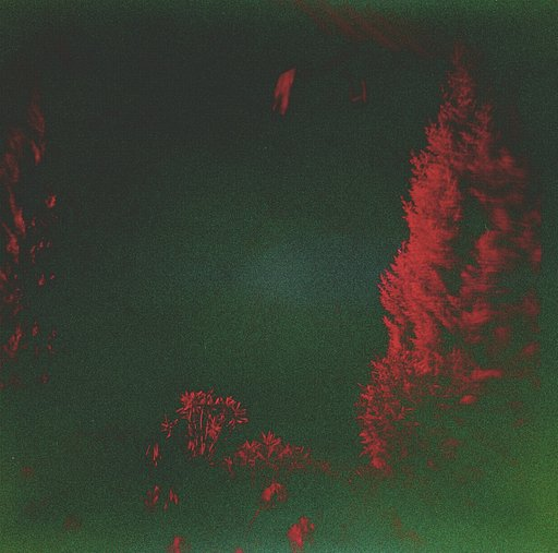 Holga 120 With Redscale
