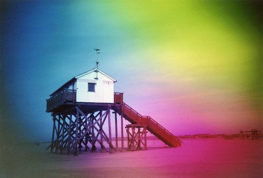 Nudels is our LomoHome of the Day!