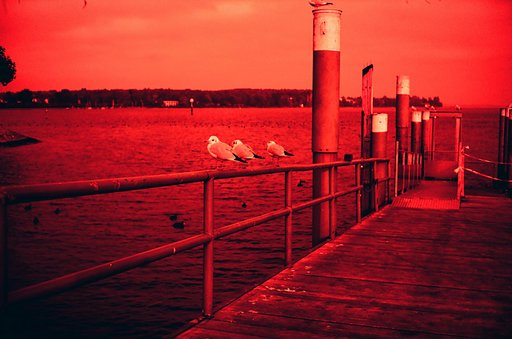 Tipster: DIY X-Pro Redscale