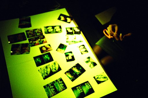 Make your own Lomowall @ Lomography Gallery Store London Soho