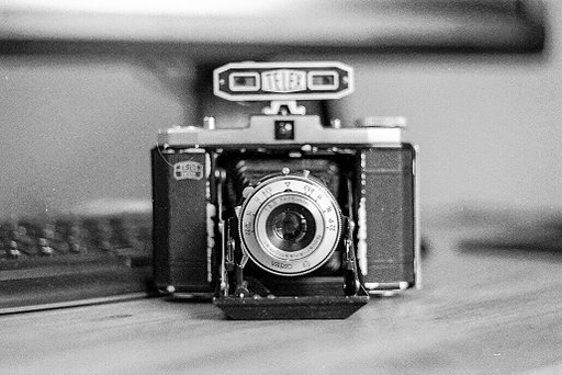 Zeiss Ikon Nettar 517/16 and 518/16 – my first medium format cameras