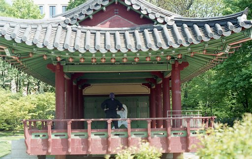 Catch Some Sun in the Korean Garden of Frankfurt!