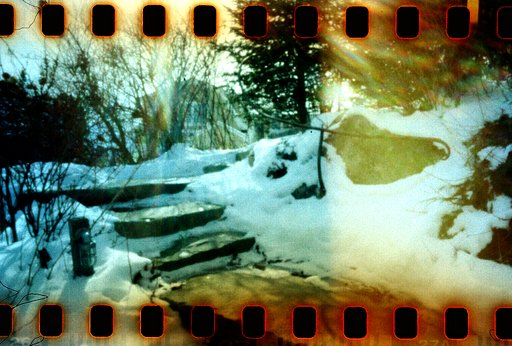Triscuit's Lomography Color Negative 100 Shots with a Homemade Pinhole Camera