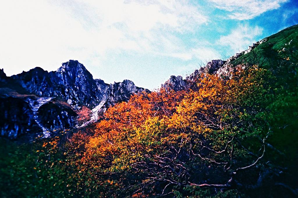 8 Intensely Luminous Slide Films for Lovers of Color