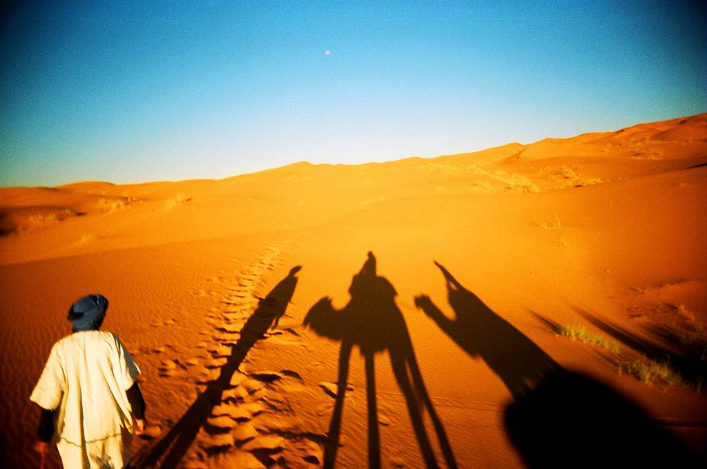 The Sizzling Sahara on Film