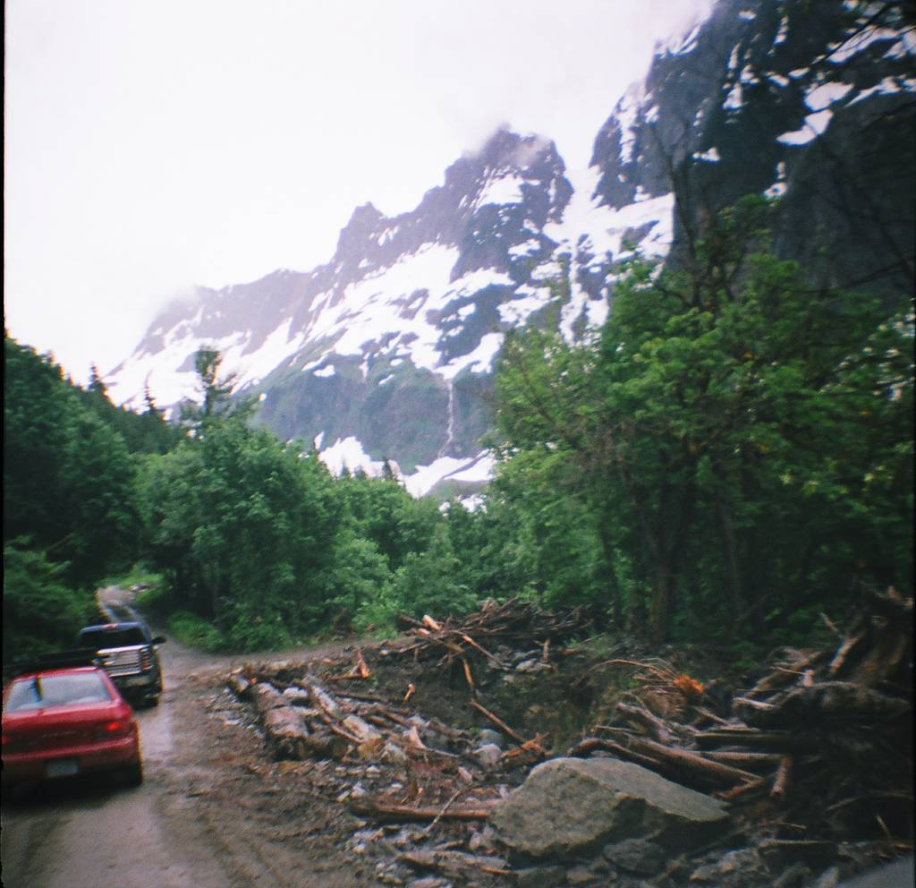 US City Slicker Herbasaurus: Camping in the Cascades with Diana Mini and Friends