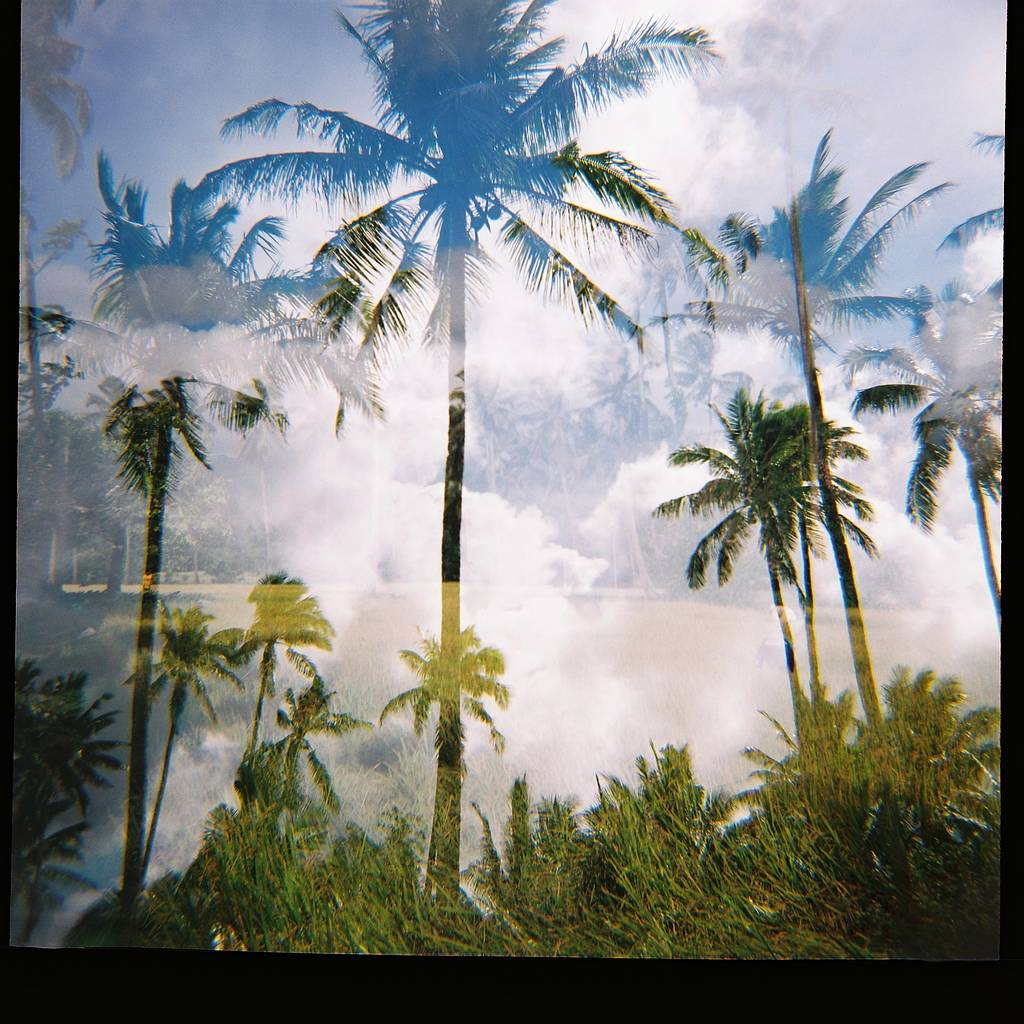 My Journey in the World of Lomography: ponzi