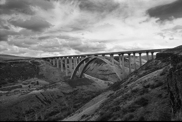 Working with New (To Me) Black and White Films