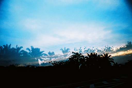 My Greatest Loves: Books and Lomography