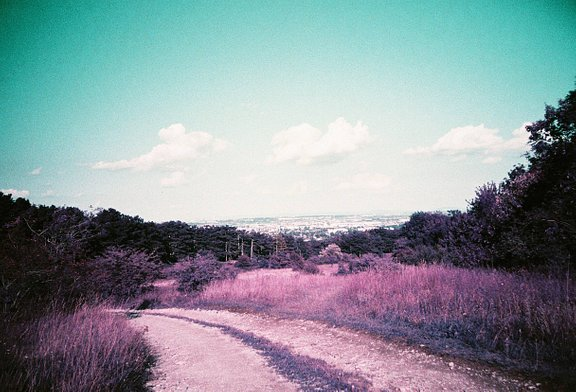 Raulduke is our LomoHome of the Day!