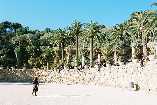Beautiful Greenery at Parc Guell, Barcelona