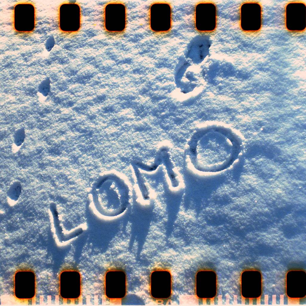 Gallery Store: Lomo Boy 聖誕預言