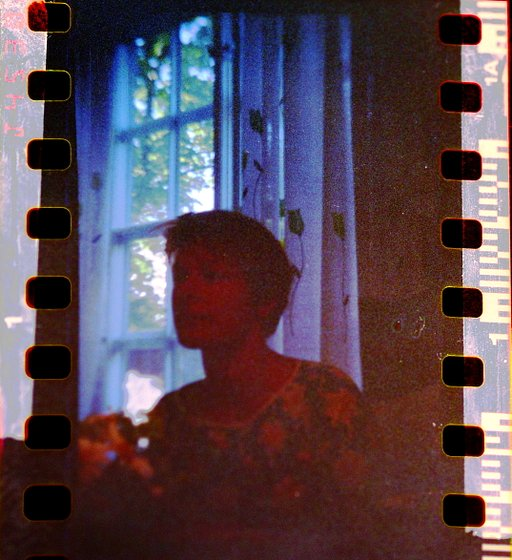 Recesky 35mm TLR: Fun All Day with My Plastic Companion