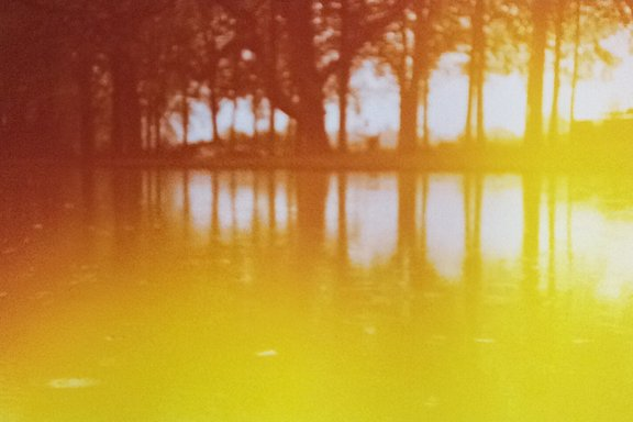 Meindertnap is our LomoHome of the Day!