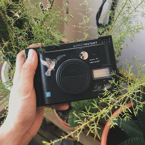 Singaporean Illustrator Mok Zijie with the Lomo'Instant