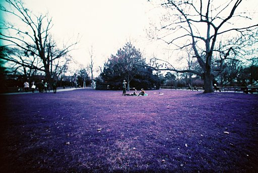 Pre-Order in Purple with LomoChrome