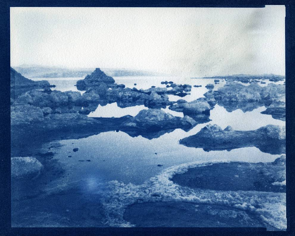 Beat the Blues:  Making Cyanotypes