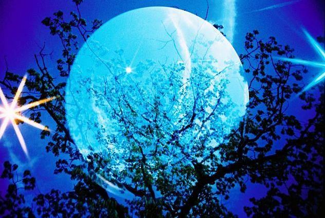 Spend this Moon Festival with Lomography Asia  - Free films  with your order!