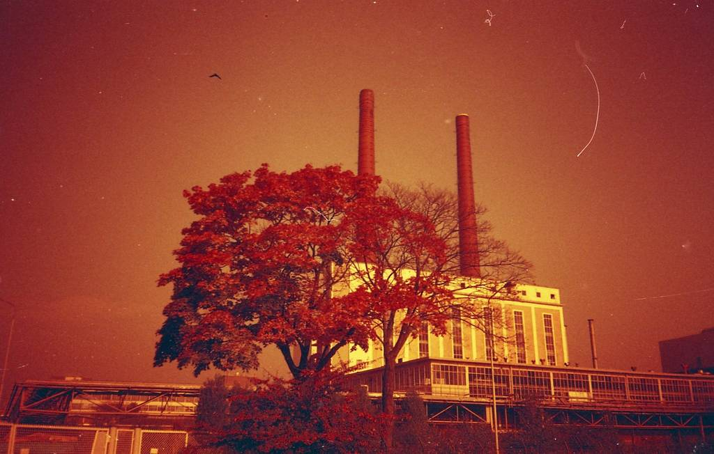 Perfect Combination: Olympus XA ♥ Redscale