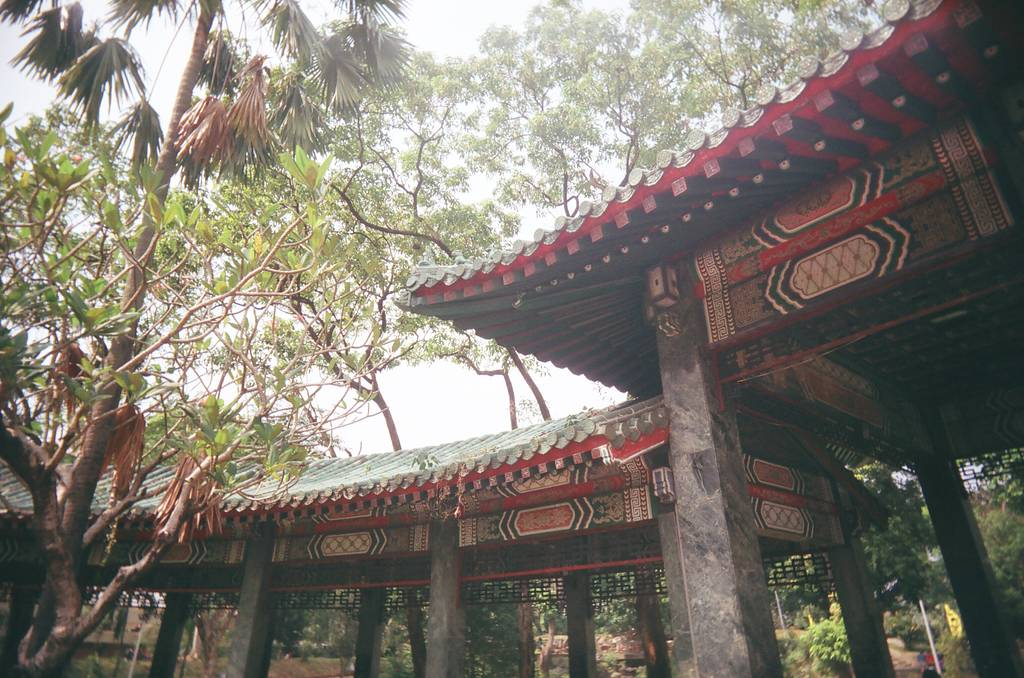 Let's Take a Stroll at the Manila Chinese Garden