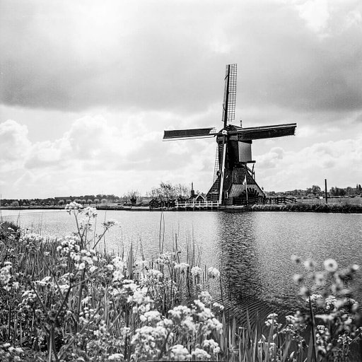 Around the World in Analogue: Kinderdijk, Netherlands