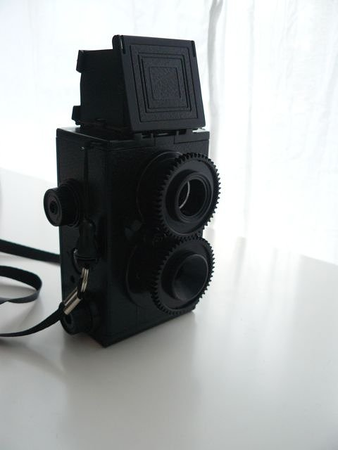Twin Lens Reflex camera - did it myself!
