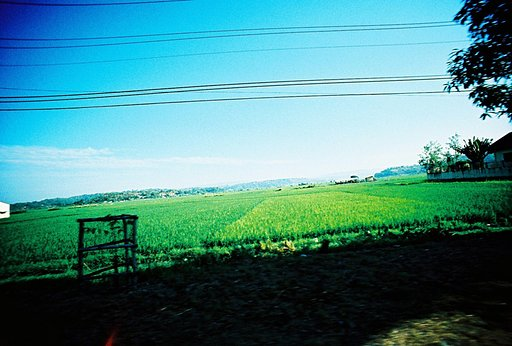 Perfect Combination: Lomo LC-A+/LC-Wide and Kodak Ektachrome E100GX
