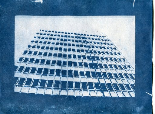 Seeing Blue: How to Make a Cyanotype Print