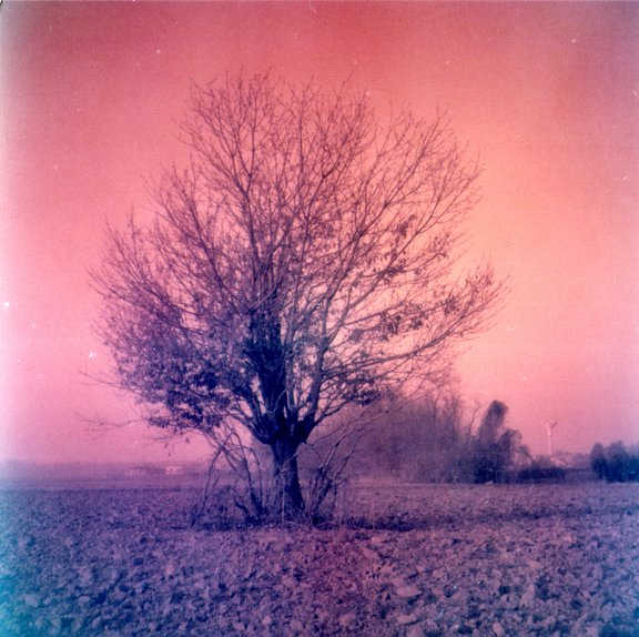 Matteovanini is our LomoHome of the Day!