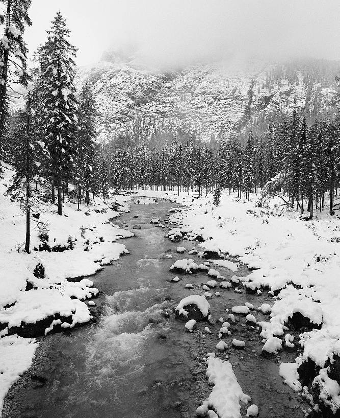 Channeling Ansel Adams: A Visual Composition Gallery