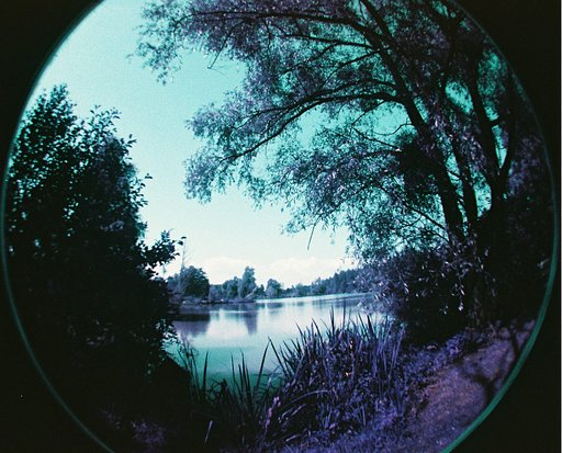 Purple and Fisheye: The First Test!