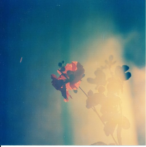 The Lomo Hipshot Showdown - Pastel Dreaming Winners Announcement